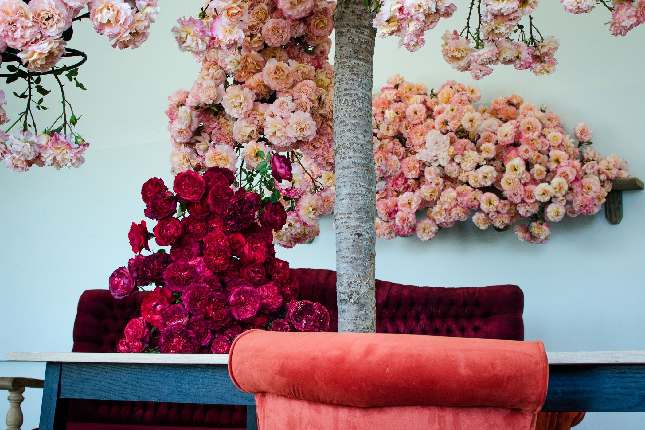 Home okasie passion for floral art as we continuously aspire to capture the essence and fleeting beauty of flowers okasie 85 dorp street stellenbosch tel izmirmasajfo